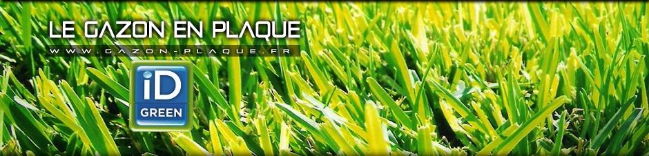 gazon en plaque herault florensac